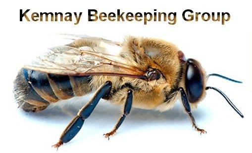 Beekeeping01